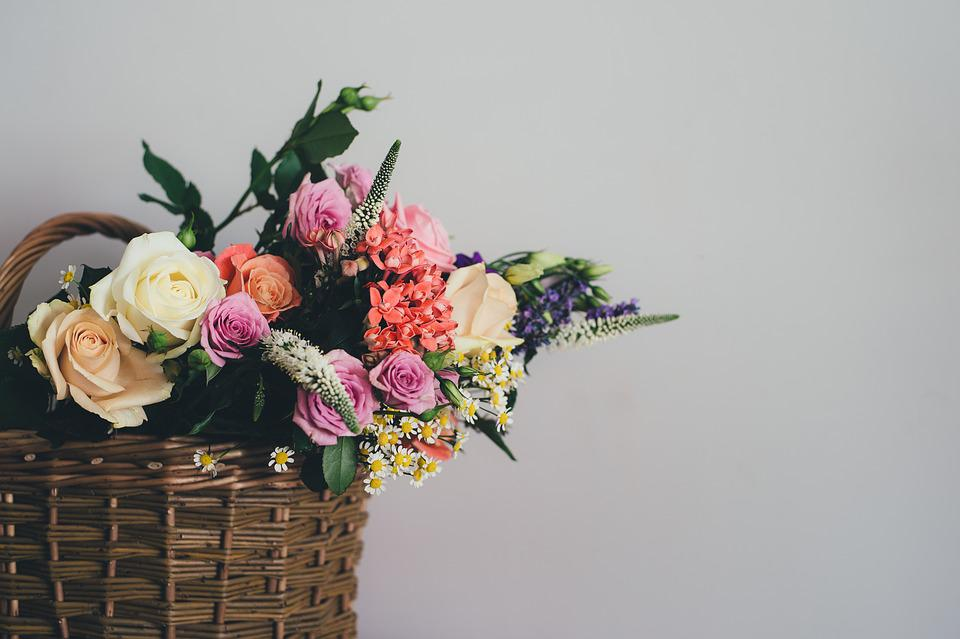 Some cool flowers to gift your pal on friendships' day