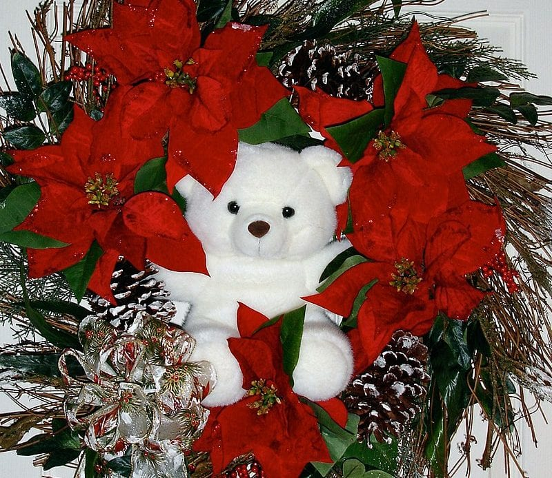 Types of Flowers to Use in your Christmas Flower Arrangement